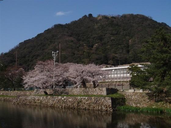 鳥取西高等学校